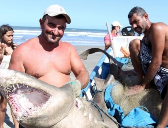 Pescadores encontraram um tubarão de aproximadamente 150 quilos e 2 metros de comprimento na tarde desta segunda-feira (19/3/12)