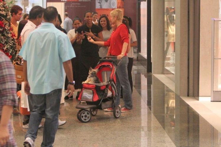 Xuxa leva seu cachorrinho de estimação, Dudu, para passear em um shopping da zona oeste do Rio. O cãozinho estava em um carrinho de bebê, e a dupla atraiu muitos fãs, que aproveitaram para tirar fotos com a apresentadora (23/11/11)
