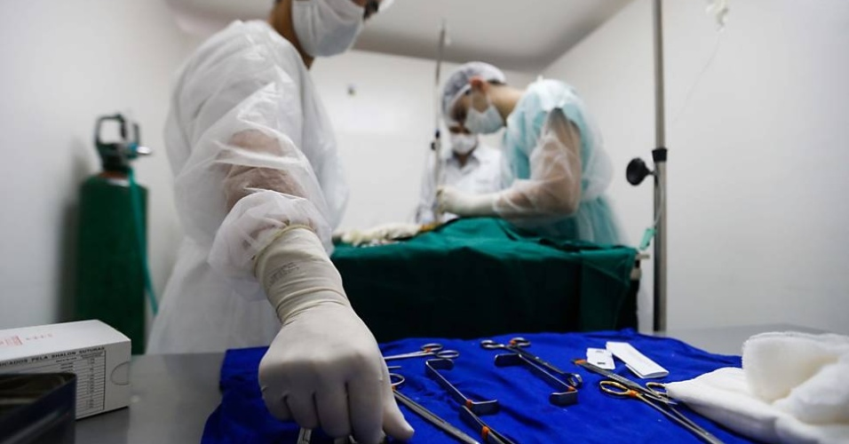 Sala de cirurgia no primeiro hospital totalmente gratuito para animais na cidade de São Paulo.