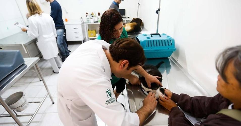 Veterinário faz atendimento no primeiro hospital público para animais em SP.