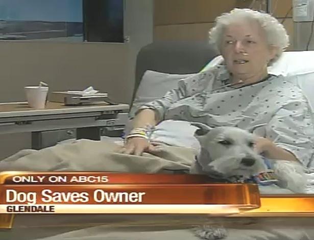 Segunda-feira (6/2) - O cãozinho Danny salvou a vida de sua dona nos EUA. Bethe Bennett, que levou um tombo feio na cozinha, fraturou o fêmur e desmaiou. O cãozinho então começou a lamber o rosto de sua dona até ela acordar. Quando Bethe percebeu o que tinha acontecido, pediu para seu cãozinho ir buscar o telefone. 'Ele demorou alguns minutos. Ia de um lado para o oturo, mas conseguiu se lembrar do treinamento que fez há alguns anos', disse Bethe.