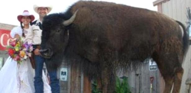 Quarta-feira (22/2) - O casal Ronald e Sherron Bridges tem um fofo animalzinho de estimação chamado Wildthing (algo como Coisa Selvagem, em português). Claro que com um nome desses não se trata de um poodle. O bicho em questão é um búfalo que vive como um gatinho. O búfalo é tão querido que quando Ronald e Sherron resolveram fazer uma cerimônia de renovação de votos de matrimônio, Wildthing foi chamado para ser o padrinho.