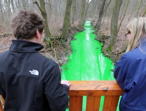 Curiosos observam as águas do ribeirão Grone, perto de Göttingen, na Alemanha