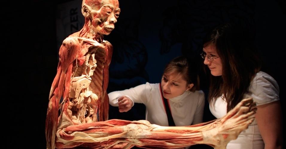Exposição sobre o corpo humano instalada no Budapest's Vam Design Center, na Bélgica