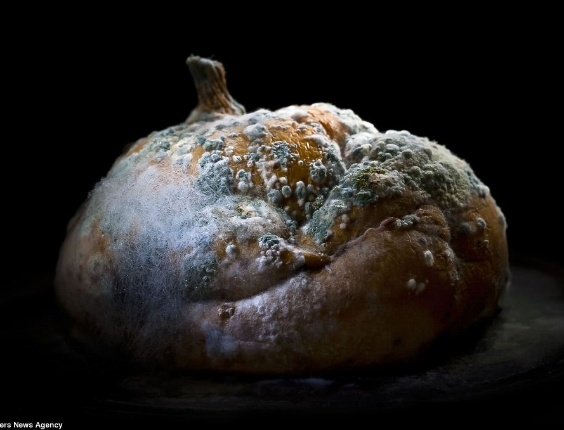 Fotógrafo faz ensaio com vegetais podres (26/4/12)