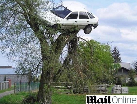 Como castigo, vizinhos penduram carro de mau motorista em árvore, na Polônia