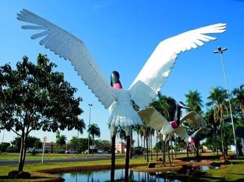 """A internauta Cyda Pinheiro clicou com exclusividade para o """"Minha Cidade"""" um parque que expõe esculturas de tuiuiús, aves típicas da região pantaneira"""