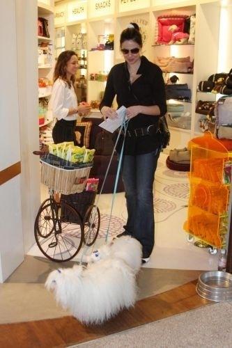 Luciana Gimenez passeia com seus cães por shopping de São Paulo (28/10/10)