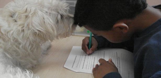 A terapia com animais pode ser útil para autistas, pois estimula a criação de vínculo