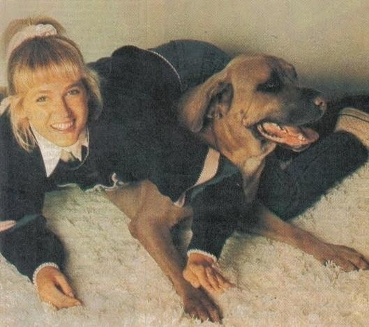 """Xuxo foi o cachorro mais famoso que Xuxa já teve. A apresentadora ganhou o cão, da raça fila, em 1982, quando foi fazer o filme """"Fuscão Preto"""". Na época, o bichinho tinha apenas 15 dias. Por ter o pelo claro, e as pessoas dizerem que o cachorro era parecido com ela, a apresentadora o batizou com seu nome no masculino"""