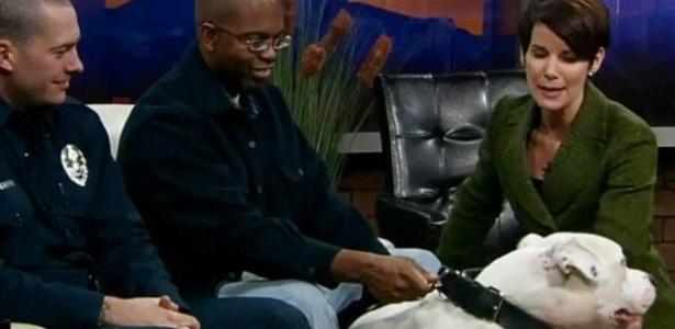 Quinta-feira (9/2) - Era para ser um feliz encontro entre um cachorro da raça mastiff argentino e seu dono, Michael Robinson, com o bombeiro que resgatou o animal de um lago congelado em Denverm, nos EUA. No entanto, a âncora Kyle Dyer, da emissora KUSA, estava terminando a entrevista e acariciando o animal, quando Warrior Maximus reagiu e mordeu o rosto da jornalista, que precisou fazer uma cirurgia de emergência para reconstruir os lábios.