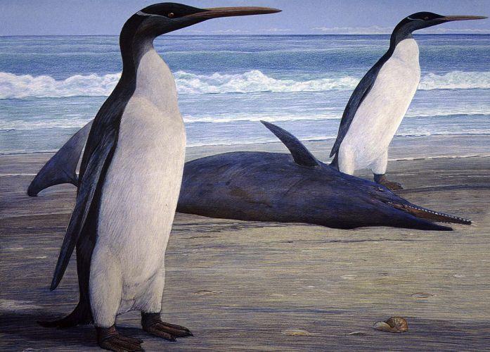 Terça-feira (28/2/12) - Cientistas reconstroem um pinguim enorme que está extinto há 25 milhões de anos a partir de fósseis encontrados na Nova Zelândia. Os pesquisadores usaram ossos de dois grupos distintos de restos da ave pré-histórica. O esqueleto de pinguins-reis foi usado como modelos para a reconstrução. O trabalho da equipe de cientistas da Nova Zelândia foi publicado na revista científica Journal of Vertebrate Paleontology.