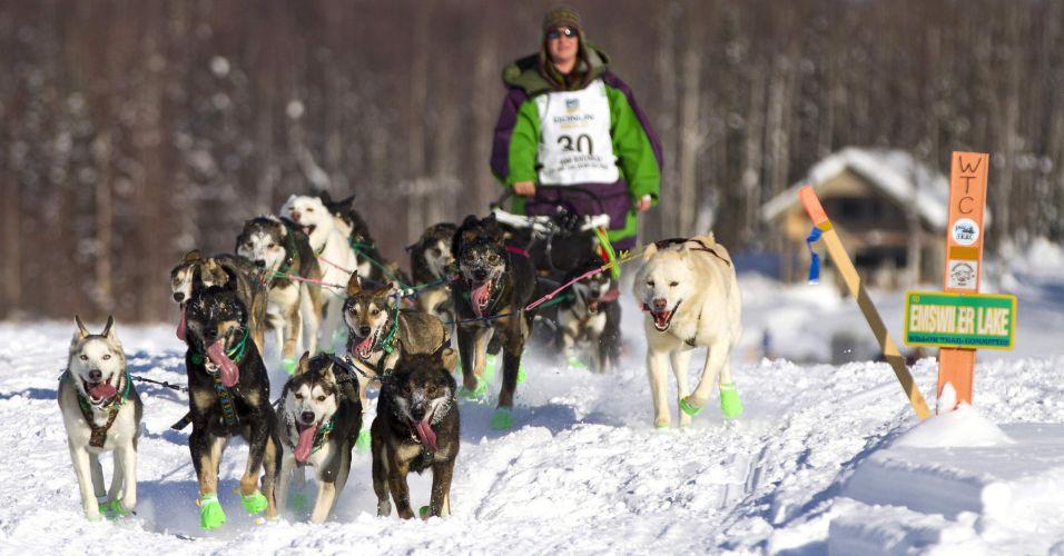 Corrida de cães nos EUA