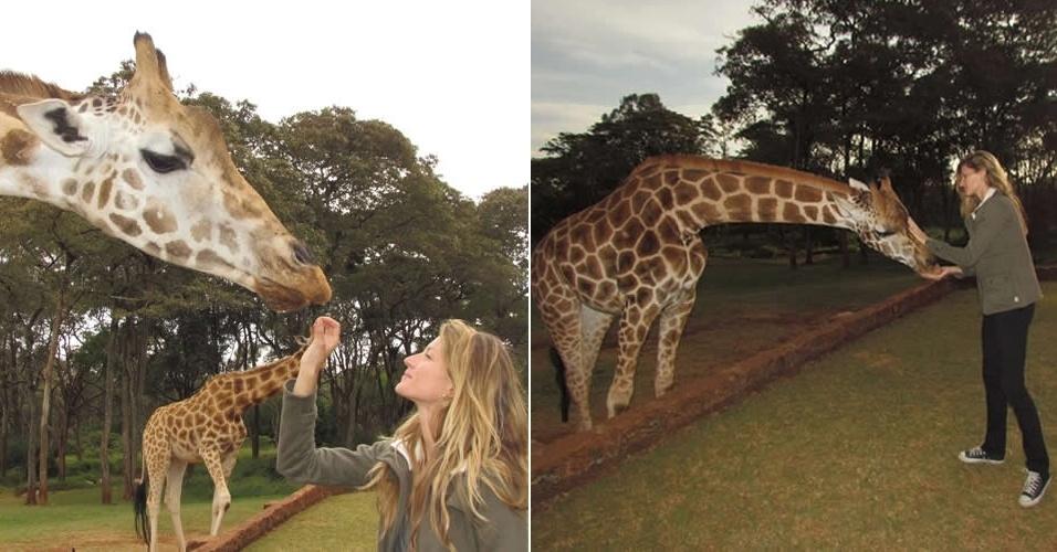 Quarta-feira (7/3) - Gisele Bundchen visita santuário de girafas na África, que estão em extinção.